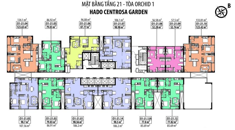 TANG 21 CENTROSA GARDEN ORCHID 1